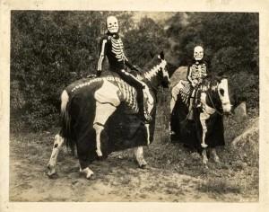 horsesdraped