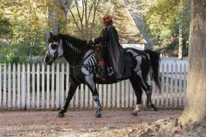 horseskeletonpumpkinrider